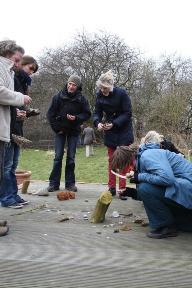 In einer NLP-Master Ausbildung legen wir ein Naturmandala