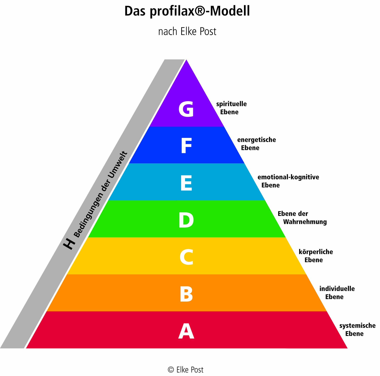 Pyramide des profilax-Modells